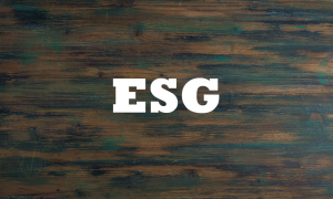 Webinar – The Unintended Consequences of Allocating to ESG Managers